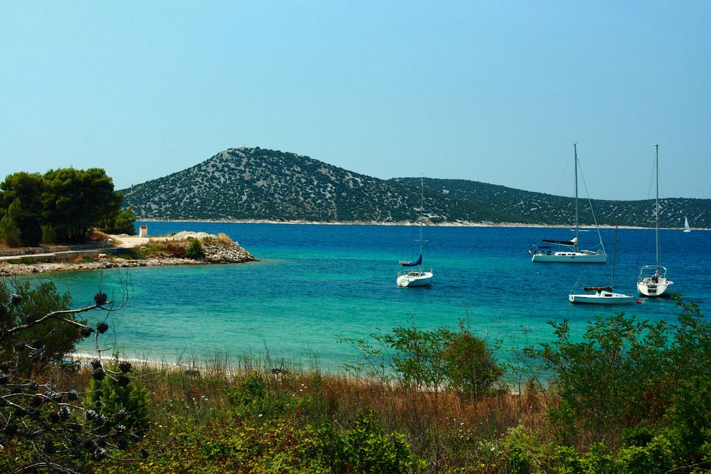 Tour isole Croazia. Isola di Provicchio. Il mare intorno a Prvić è piuttosto ricco di pesce.