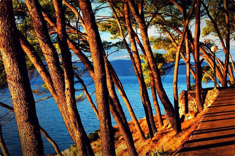 Le spiagge dell'isola di Hvar sono prevalentemente rocciose e ghiaiose disseminate in numerose baie, insenature e isole minori lungo la linea costiera dell'isola settentrionale e meridionale.