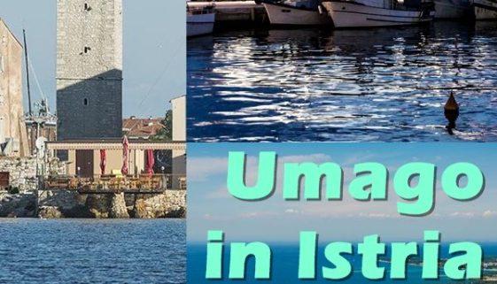 """Umago, Croazia è nota come """"la porta dell'Adriatico"""". In questa parte dell'Istria si trovano importanti centri alberghieri come ad esempio Stella Maris, Polynesia, Katoro."""